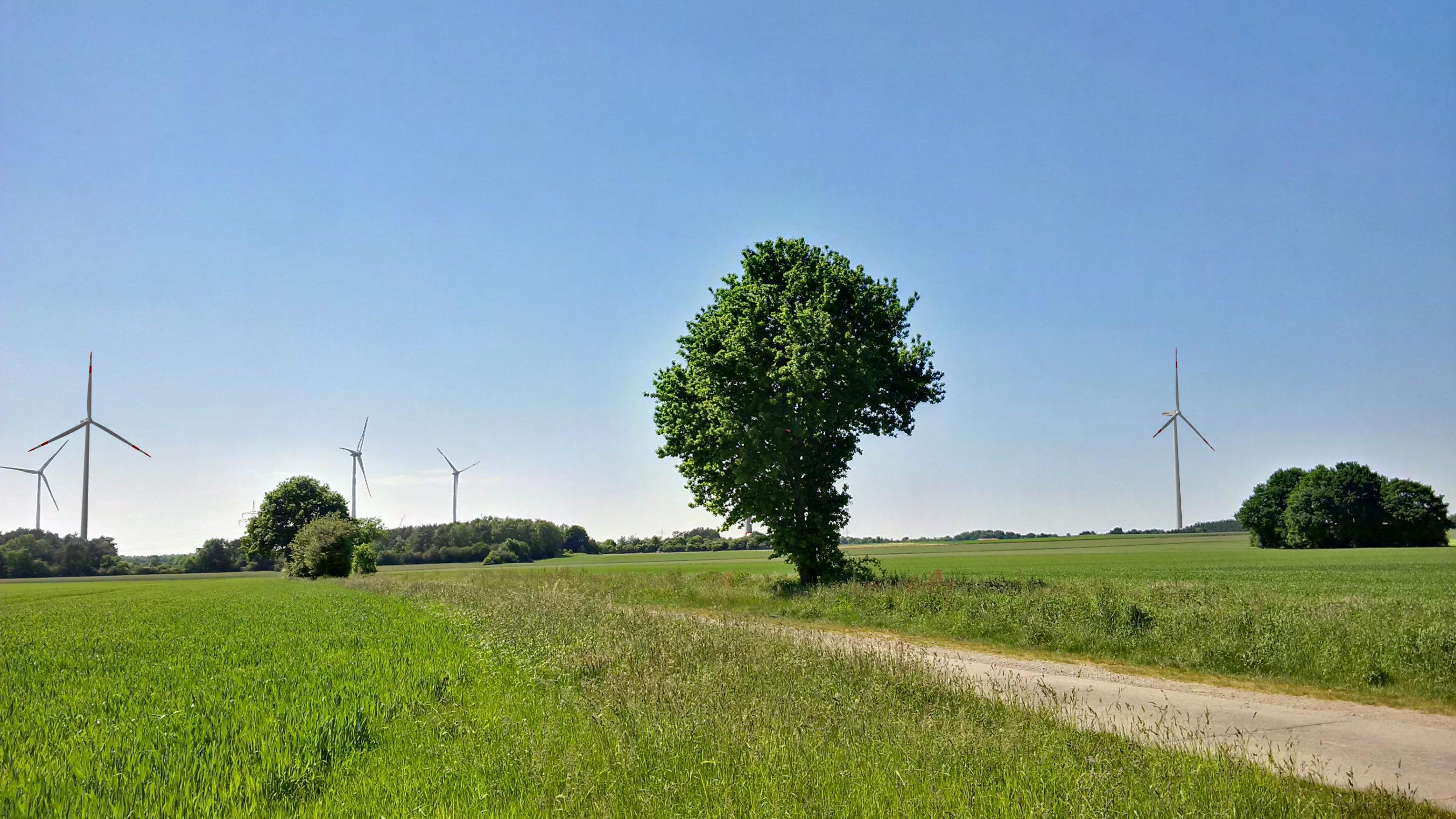 Foto 3 - WEA Immenbeck + 3 x Senvion (Ardestorf)